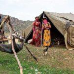 بیمه روستاییان با پرداخت سالانه ۲۴۰ هزار تومان